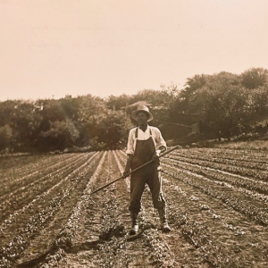 Image Of Chinese Man In Field - Montgomery Inn