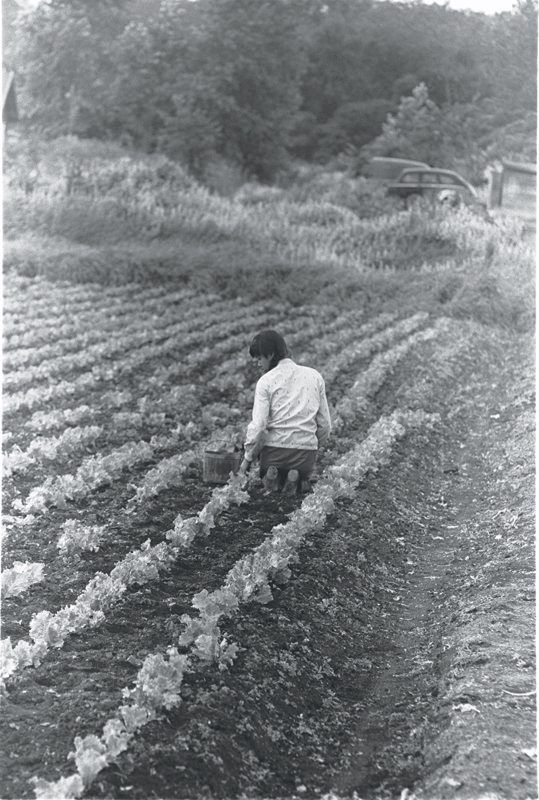 Chinese female in old photo kneeling in a field, with her back to us